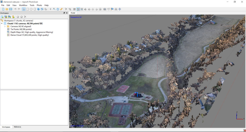 The resulting dense point cloud.