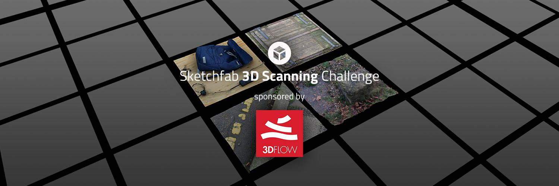 Sketchfab Community Blog - Sketchfab 3D Scan Challenge: A