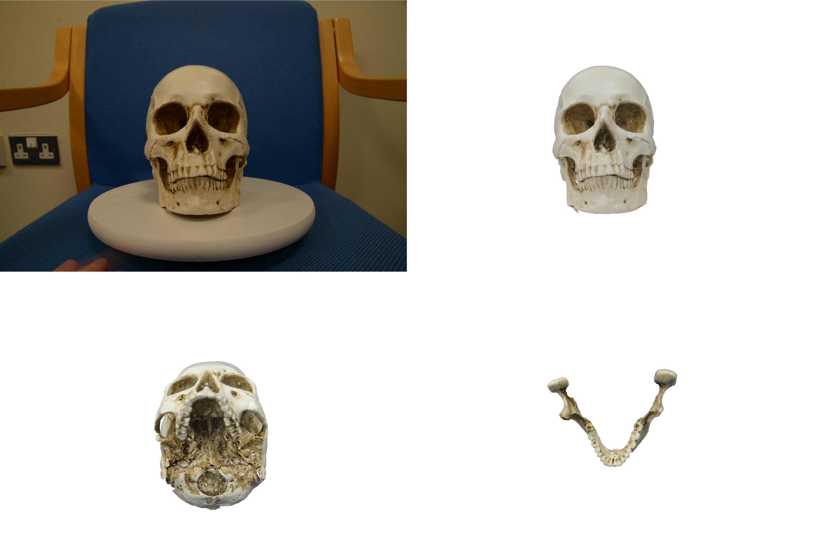 photogrammetry software masked images