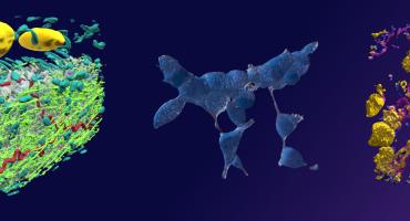 glasgow-life-sciences-header-image