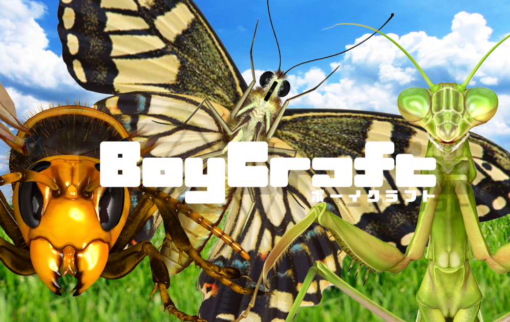 boycraft 3d assets