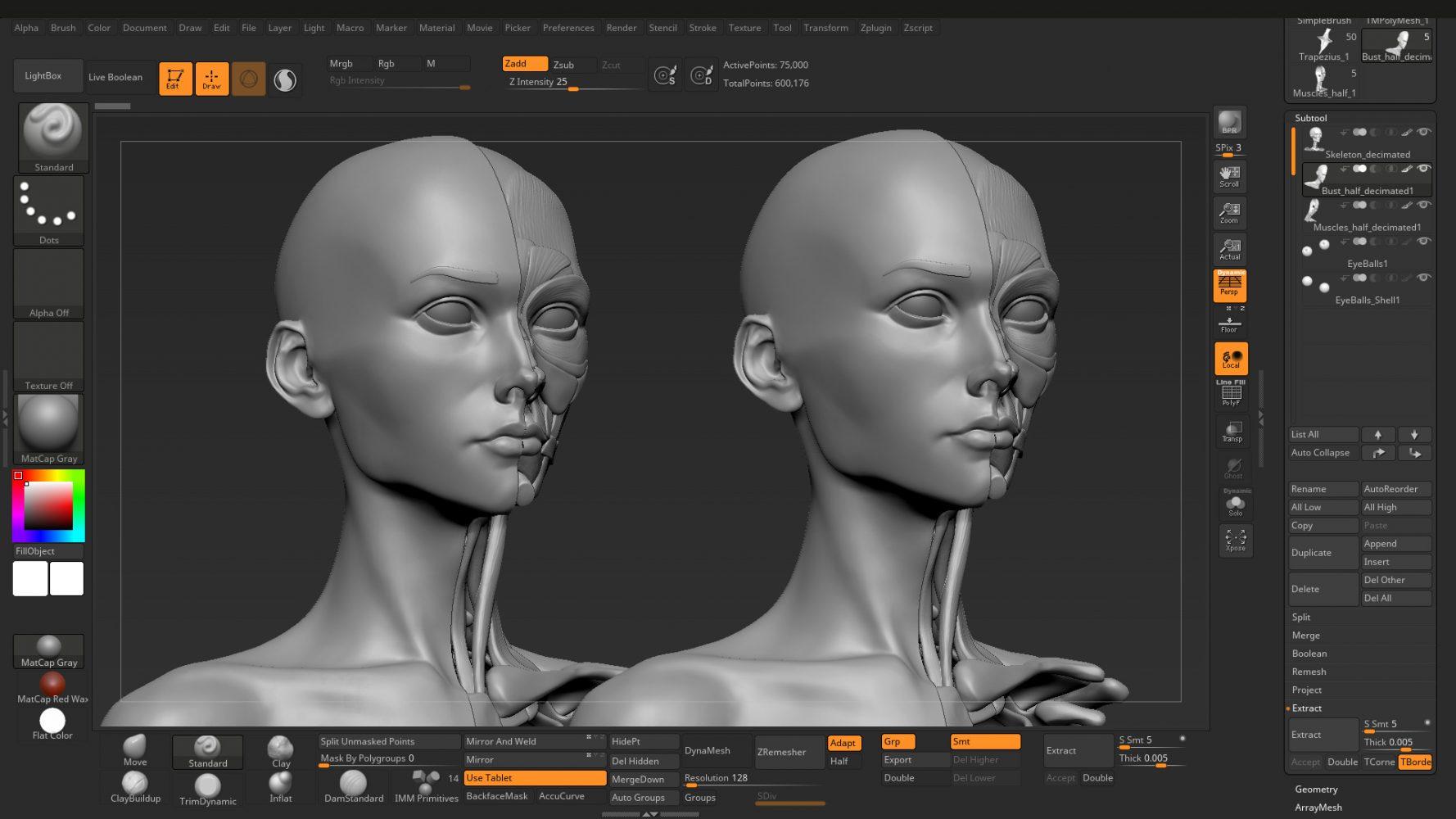 anatomy sculpt optimization