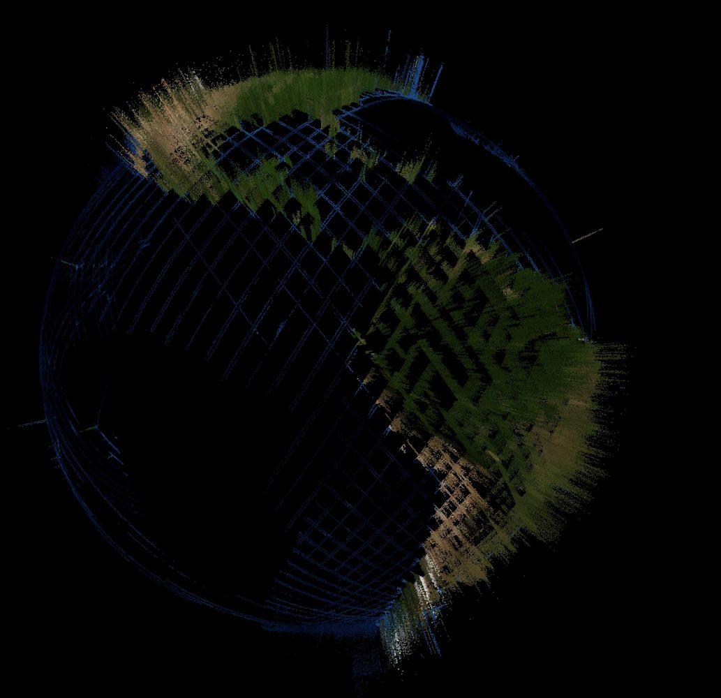 atticus stovall tree carbon visualization