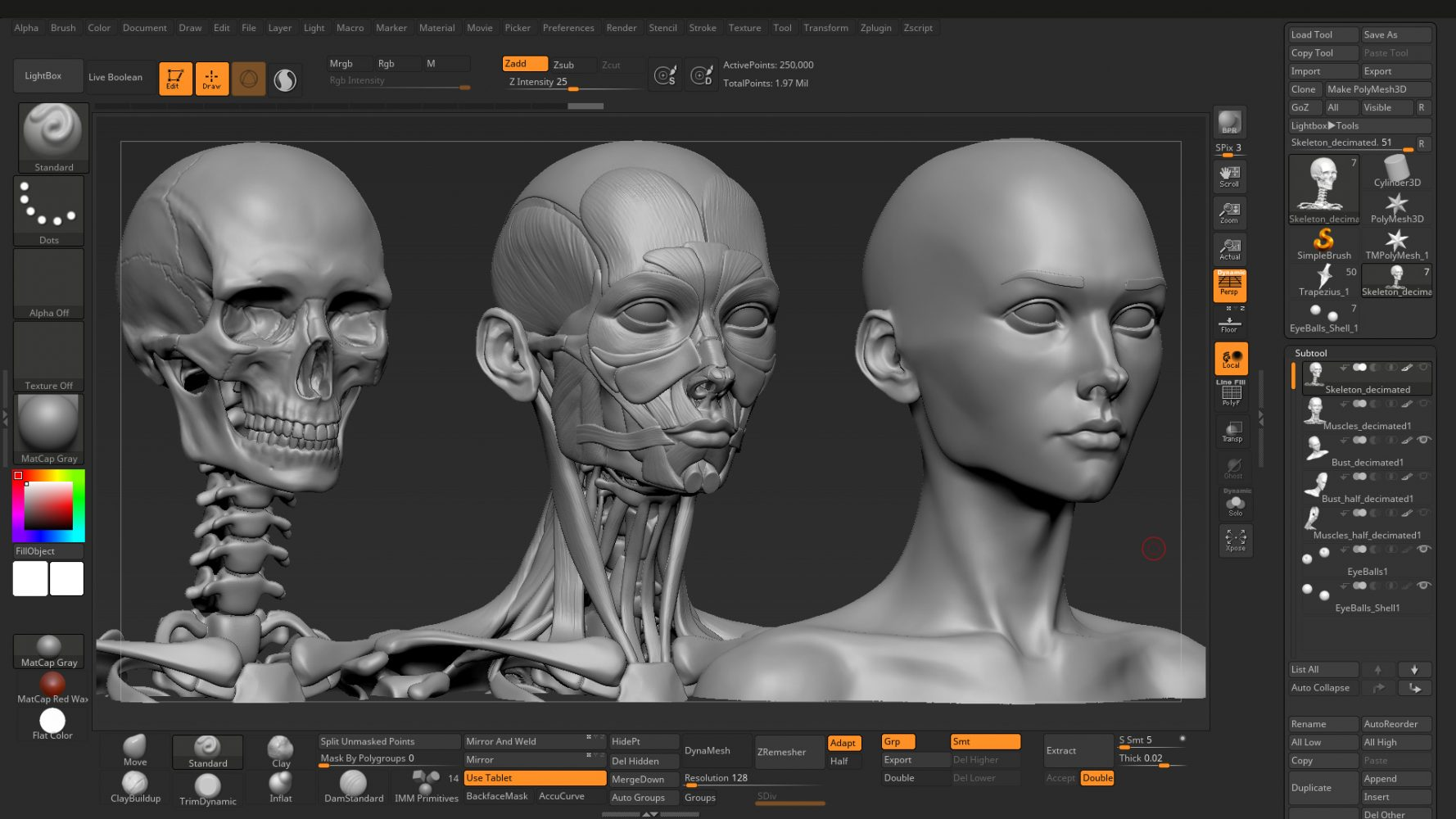 anatomy sculpt polish