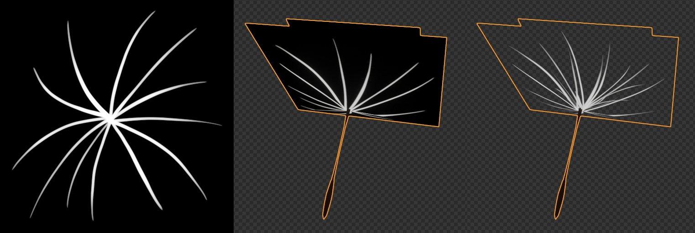 dandelion texture image