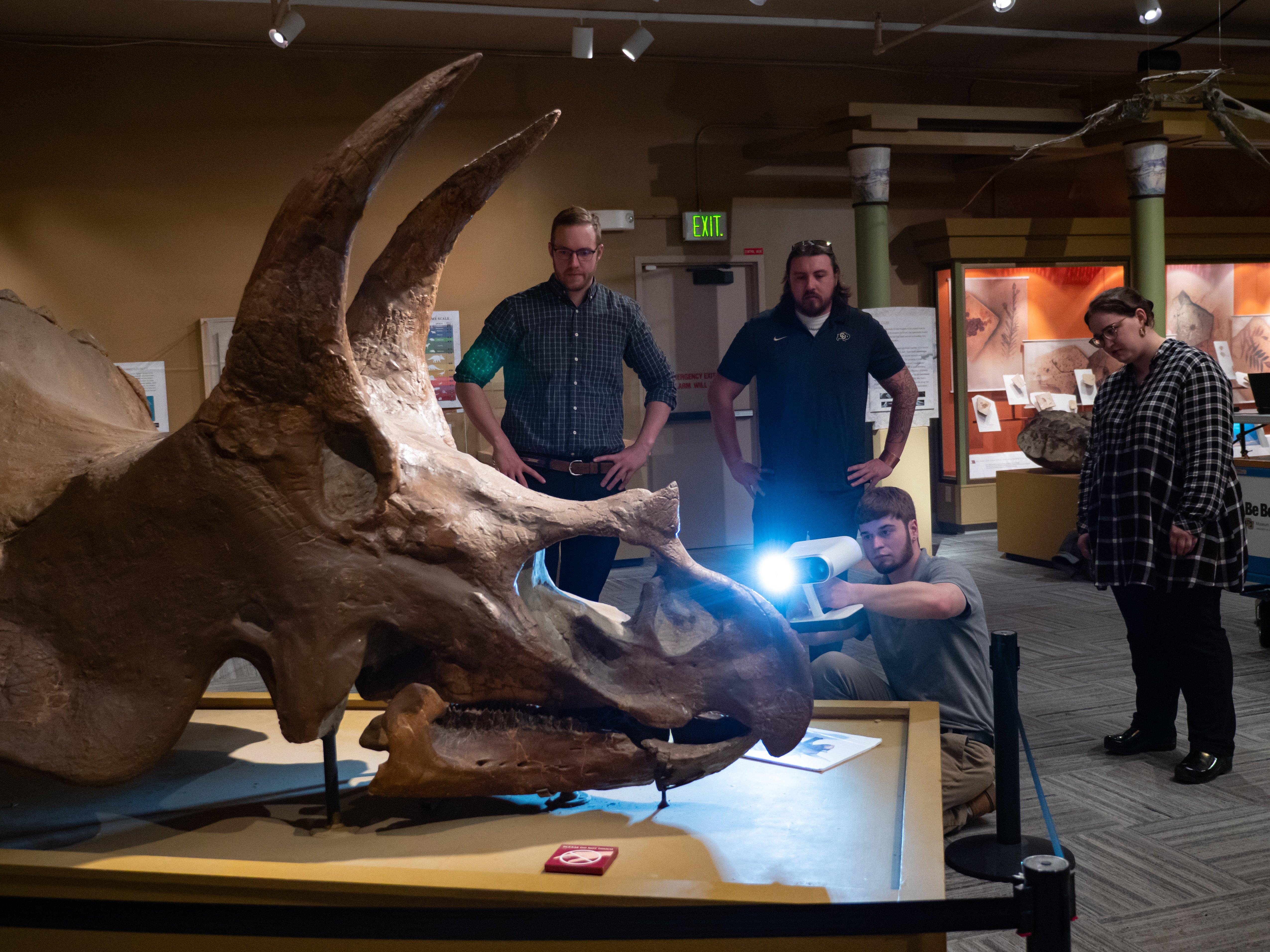 university of colorado archaeozoology image